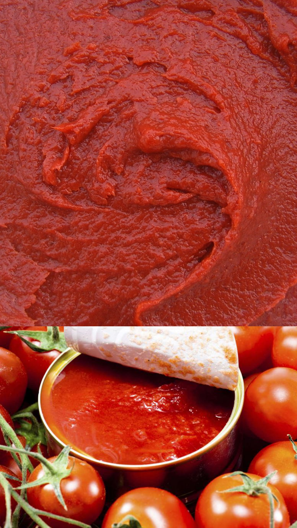 Pasta de Tomate 30/32° brix Hot Break | Pasta Concentrada de Tomate Super Hot Break | Agrozzi, principal productor y proveedor de Pasta de Tomate de Chile